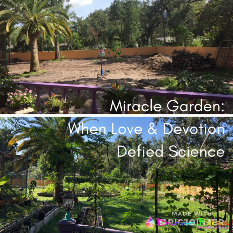 Miracle Garden: When Love and Devotion Defy Science